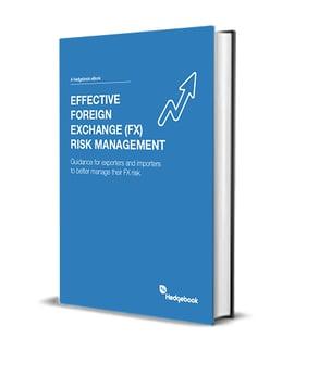 FX Risk ebook-cover